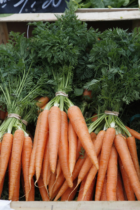carottes et ses fanes